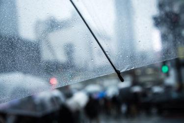 『雨が降ると君は優しい』佐々木希が依存症?!注目のキャスト